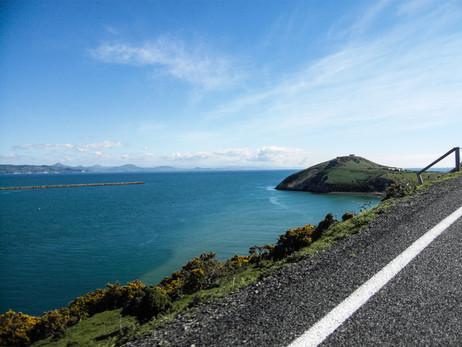 Otago Peninsula / New Zealand