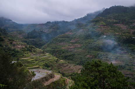 Rice terraces and fog in Banaue, Philippines