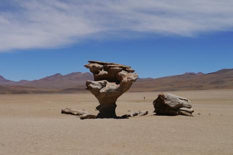 Árbol de Piedra, Salvador Dalí Desert / Bolivia · 2014