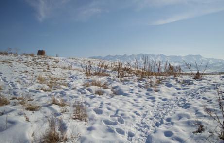 Burana / Kyrgyzstan