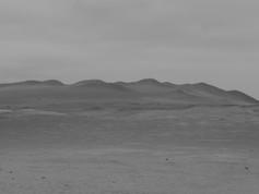 Paracas National Park / Peru · 2013
