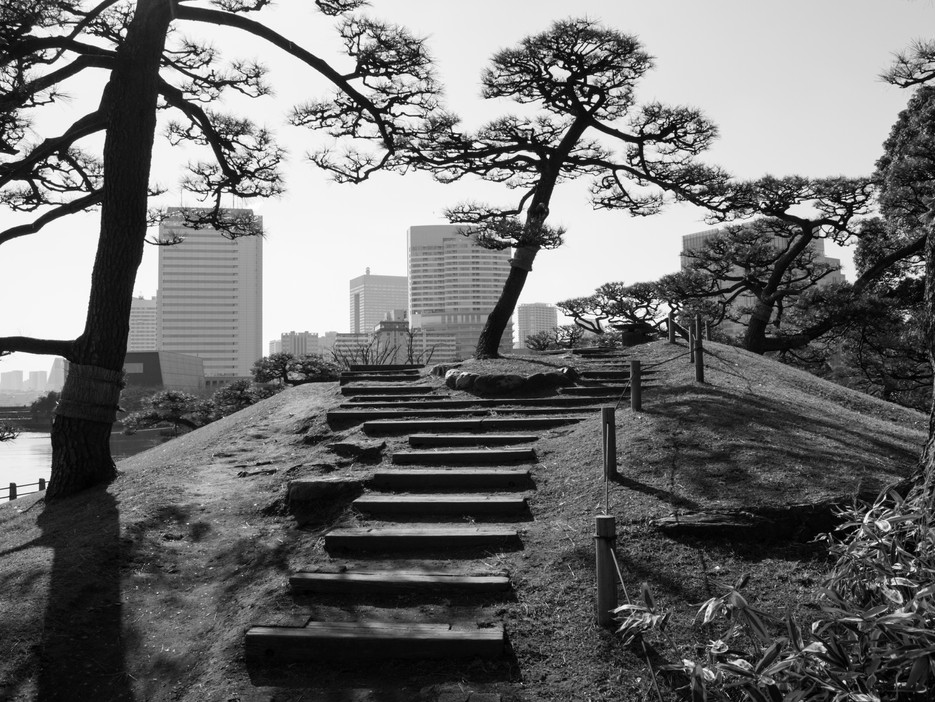 Rikyu Garden, Tokyo / Japan · 2016
