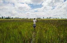 Okavango Delta / Botswana · 2017