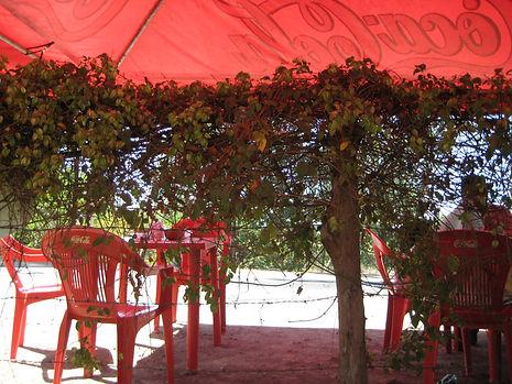 Roadside restaurant in Mexico