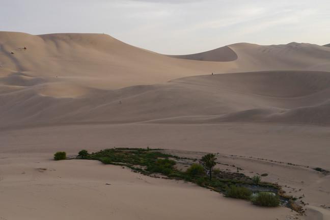 Huacachina / Peru · 2013
