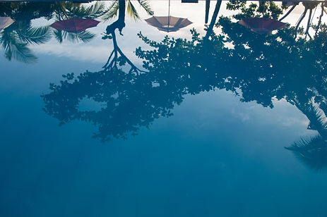 Reflections in a pool in Donsol, Philippines