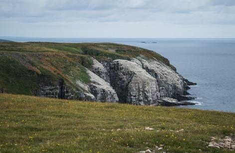 Newfoundland / Canada