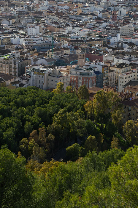 Nature and houses in Malaga, Spain