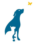 Creature Comforts Veterinary Clinic
