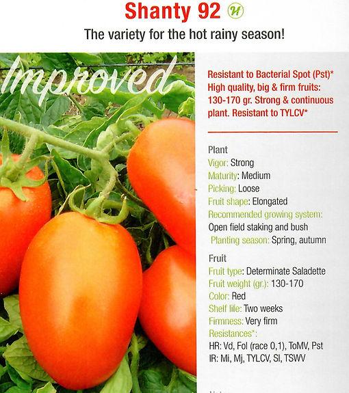 Tomato Shanty92.jpg
