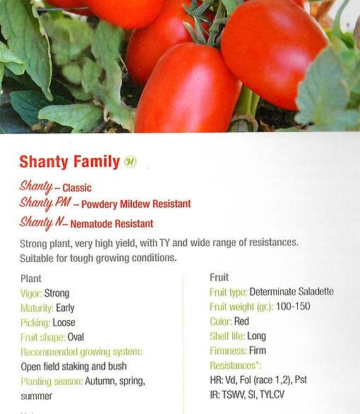 Tomato Shanty, pm.jpg