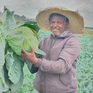 Landini Ethiopia.jpg