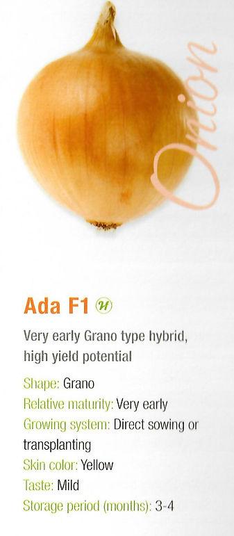 Onion Ada.jpg