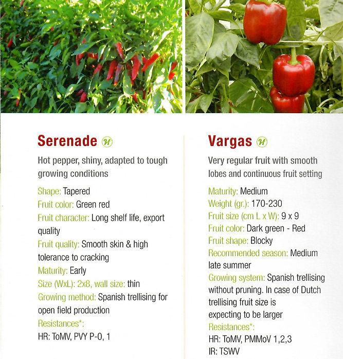 Pepper Serenade + Vargas.jpg