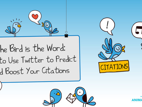 The Bird is the Word: Use Twitter to Predict and Boost Your Citations
