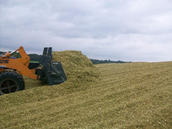 silage eater 6