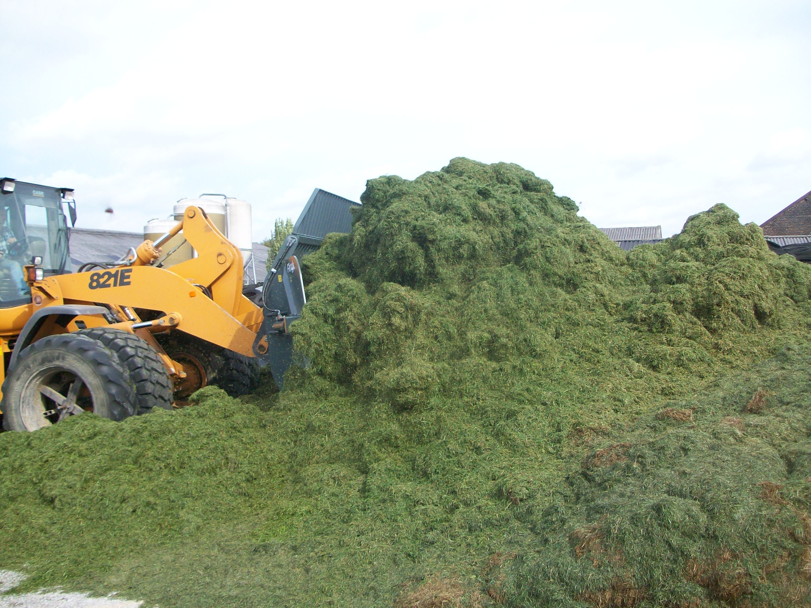 silage eater 10