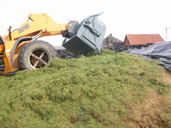 silage eater 9