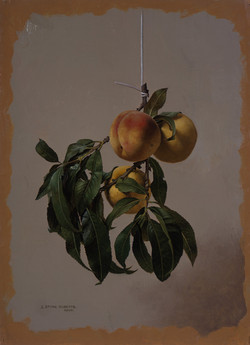 A HANGING BRANCH OF PEACHES AND LEAVES (2006)