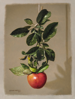 BRANCH WITH APPLE (2017)