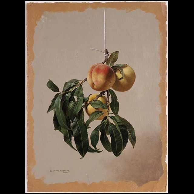 A HANGING BRANCH OF PEACHES & LEAVES (2006)
