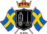 Master of Chiropractic nach Dr. Ackermann Stockholm, sanfte Chiropraktik und Strukturelle Osteopathie, Hexenschuss, Sehstörungen, Selbstheilung aktivieren,