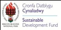 SDF Logo_CMYK (2) 2013 email 7.59KB.jpg
