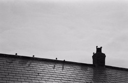 St Ives   UK   2014