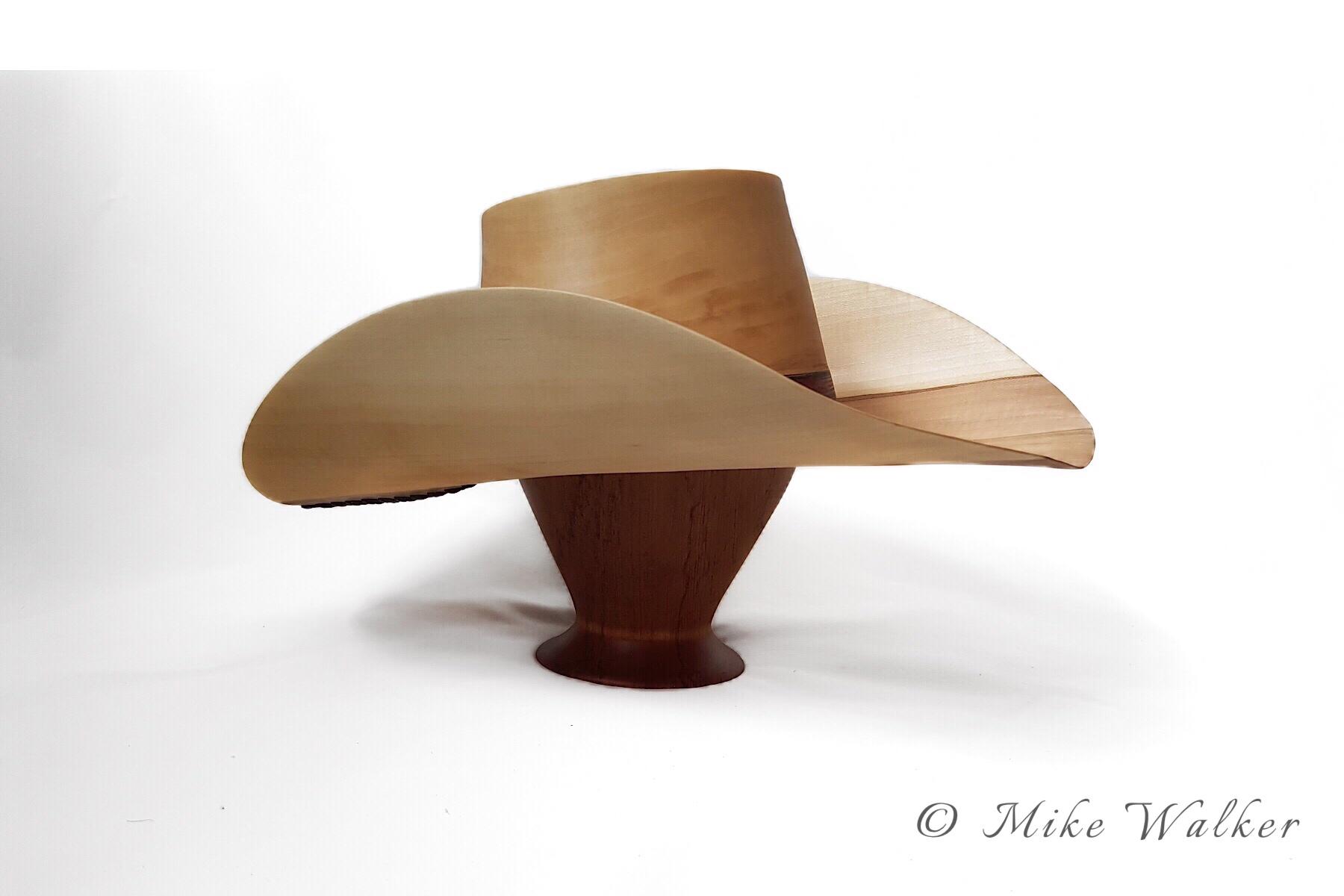 Cowboys Hat Series #2