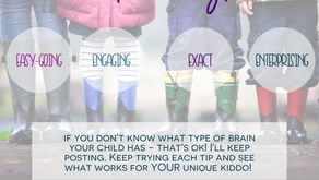 The 4 BRAIN Types for Children I see in S.U.R.E. Parenting