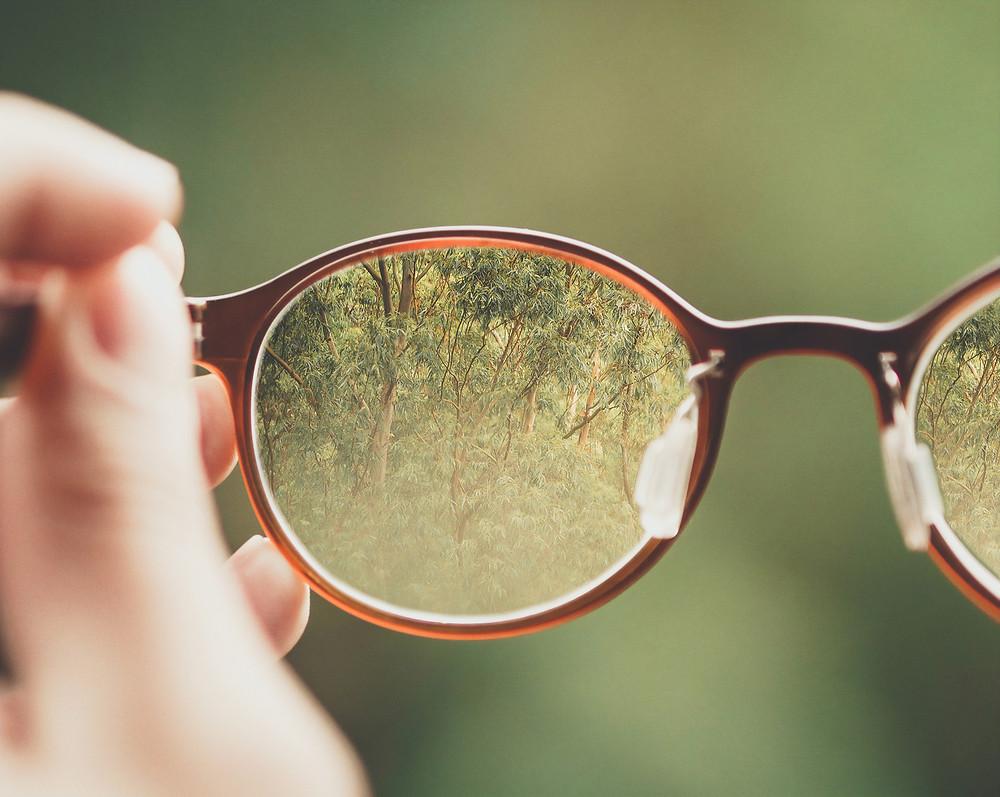 Parenting Lens Change