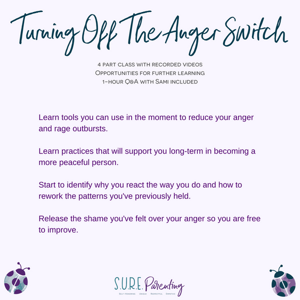 Turning Off The Anger Switch Parenting Class