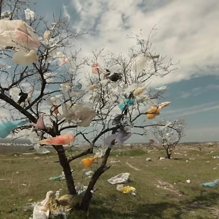 19. September 2020 14:00 World Clean up day - Hegnau