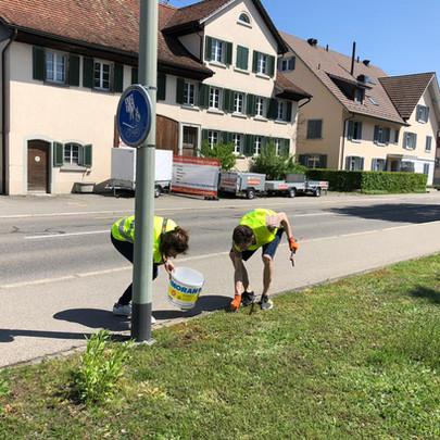 Cleanwalk-20190504-2.jpg