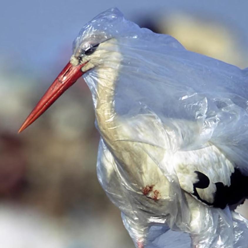 19. September 2020 13:00 World Clean up day - Zimikon (beim KFC)