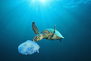 Plastic pollution in ocean problem. Sea