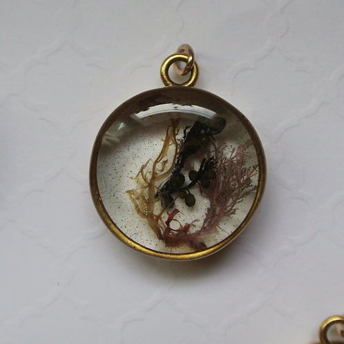 Tide Pool Pendant in Round, Deep, Gold #123