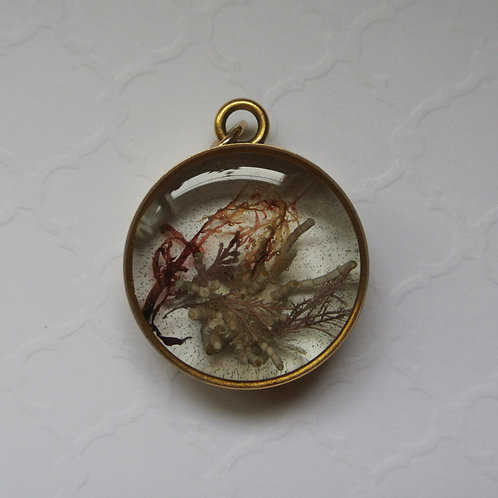 Tide Pool Pendant in Round, Deep, Gold #122
