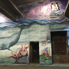 Ocean mural with whale penguins coral reef and octopus mural located in Peoria Illinois painted by muralist Jessica McGhee