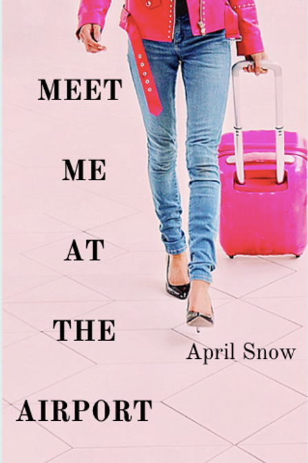 Meet Me At The Airport (Hardcover)