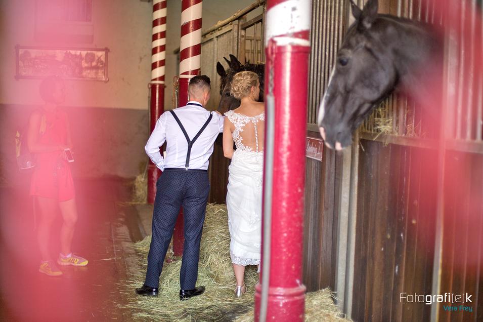Hochzeit | Brautpaar | Pferd