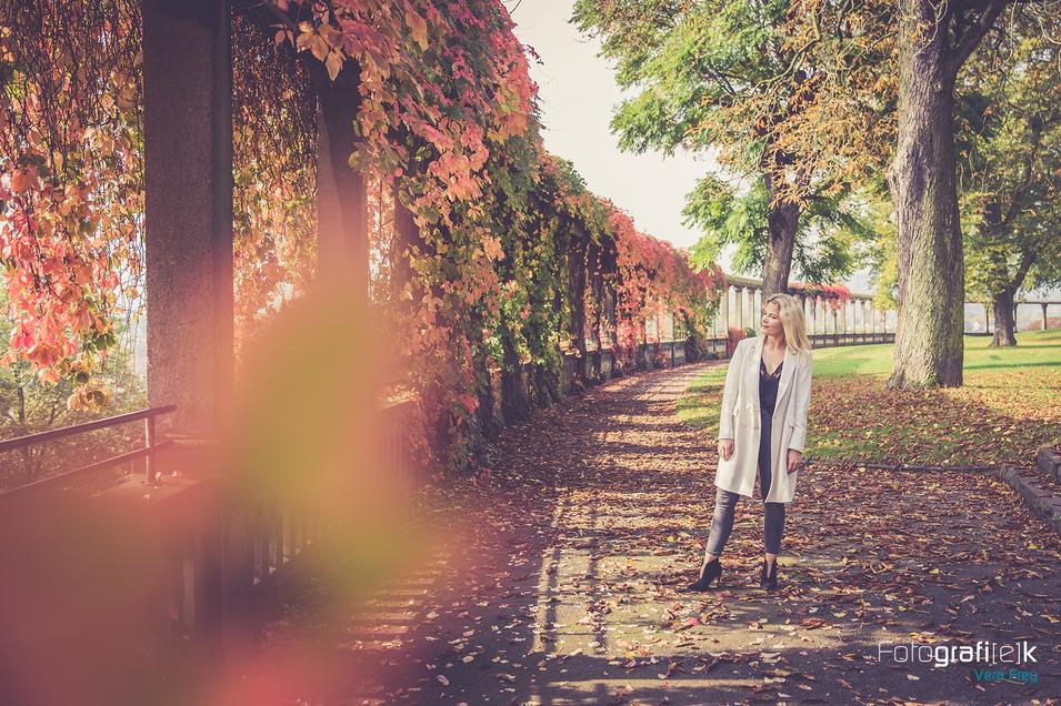 Herbstshooting   Weinblätter   Kassel