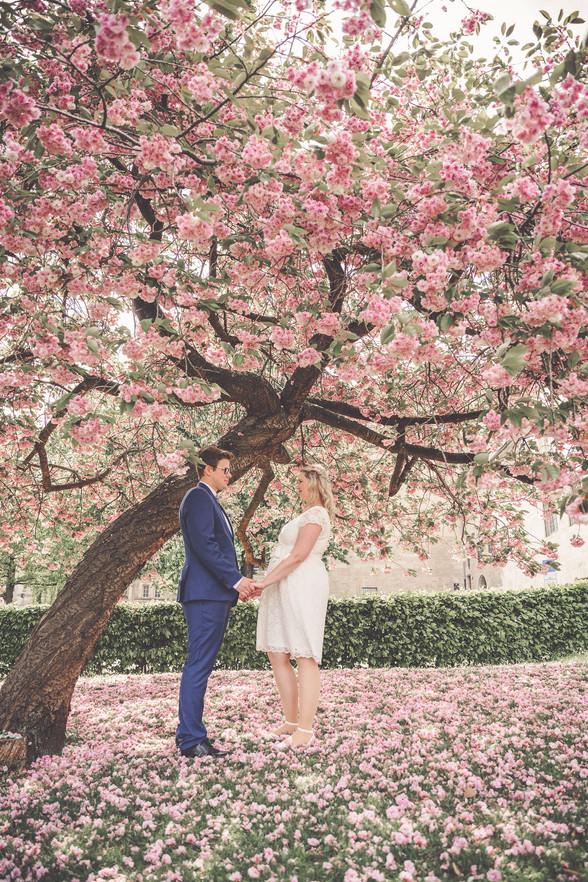 Corona-Hochzeit | Kirschbaum | Brautpaar