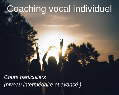 1_coaching_indiv.png