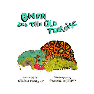 OWEN AND THE OLD TORTOISE Book Cover