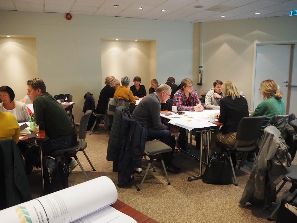 bilde fra workshop der deltakere samarbeider