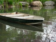 Row Boat on The Lake - Central Park