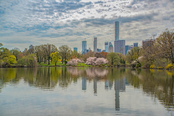 New York City - Spring at The Lake in Central Park