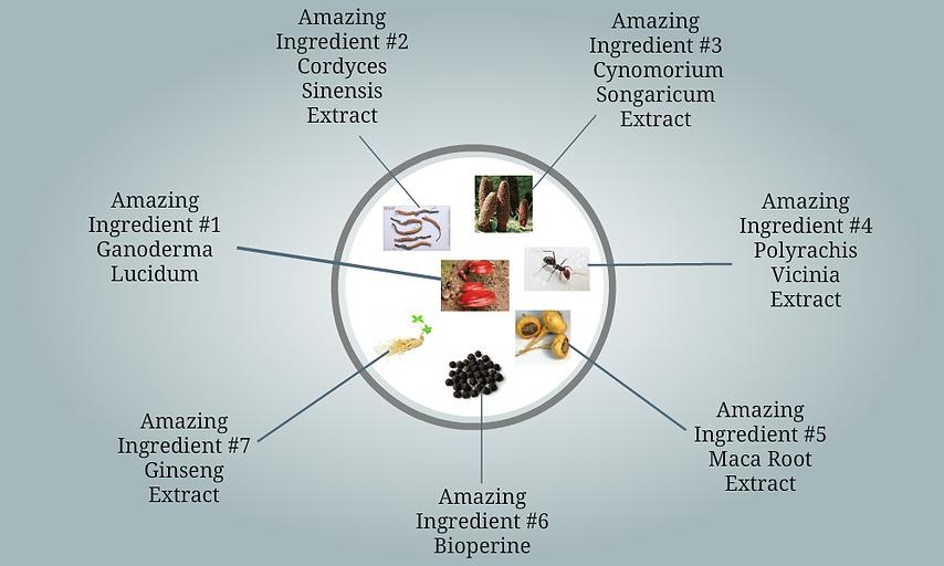 Virility ingredients.png