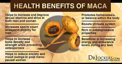 MACA_Benefits.png